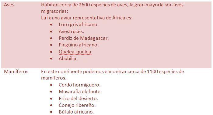 Aves-y-mamíferos-del-África