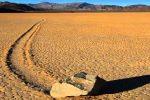 Especies Amenazadas y Animales en Peligro de Extinción en el Valle de la Muerte